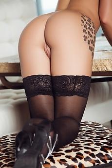 Meghan Leopard Tattooed In Black Lingerie